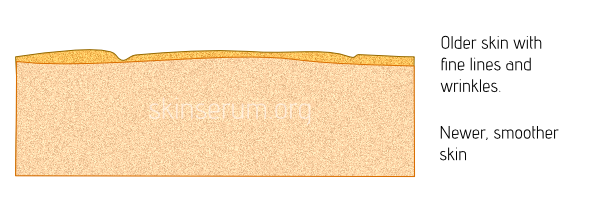 top layer of skin